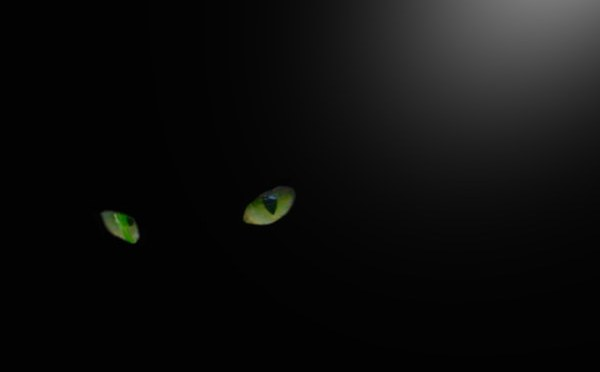 Creature Thoughts, October 2018: The Ghost Cat